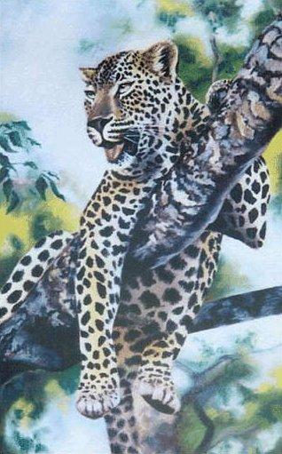leopard in tree drawing