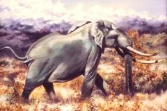 elephant bull painting