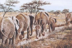 elephants walkin painting