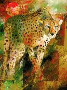 Cheetah hunting art and prints